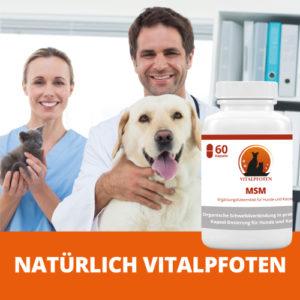 Methylsulfonylmethan in Kapseln für Haustiere